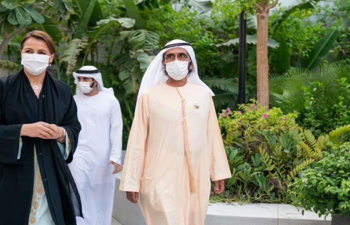 حاكم دبي: حجم تجارة الغذاء بالإمارات تجاوز ١٠٠ مليار درهم سنويًا
