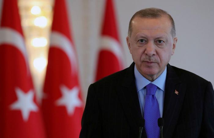 إردوغان: هناك آفاق واسعة للتعاون مع مصر