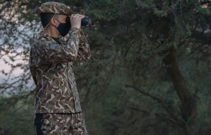 قوات الأمن البيئي تضبط 46 مواطنًا لبيعهم حطبًا محليًا لأغراض تجارية بالرياض