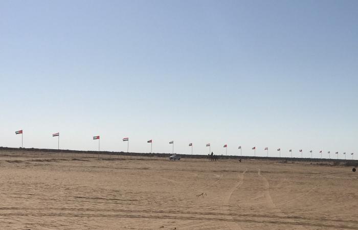 انطلاق فعاليات مهرجان سباق الهجن بالساحل الشمالى بعد قليل.. صور