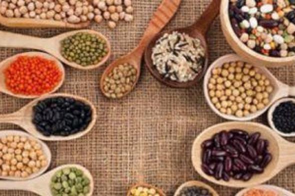 7 خضروات مليئة بالحديد يجب إضافتها في نظامك الغذائي.. تعرف عليها