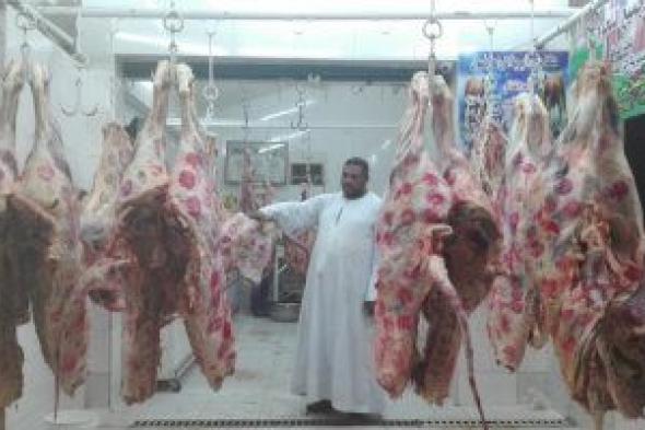 أسعار اللحوم الكندوز تتراوح بين 130-160 جنيها للكيلو